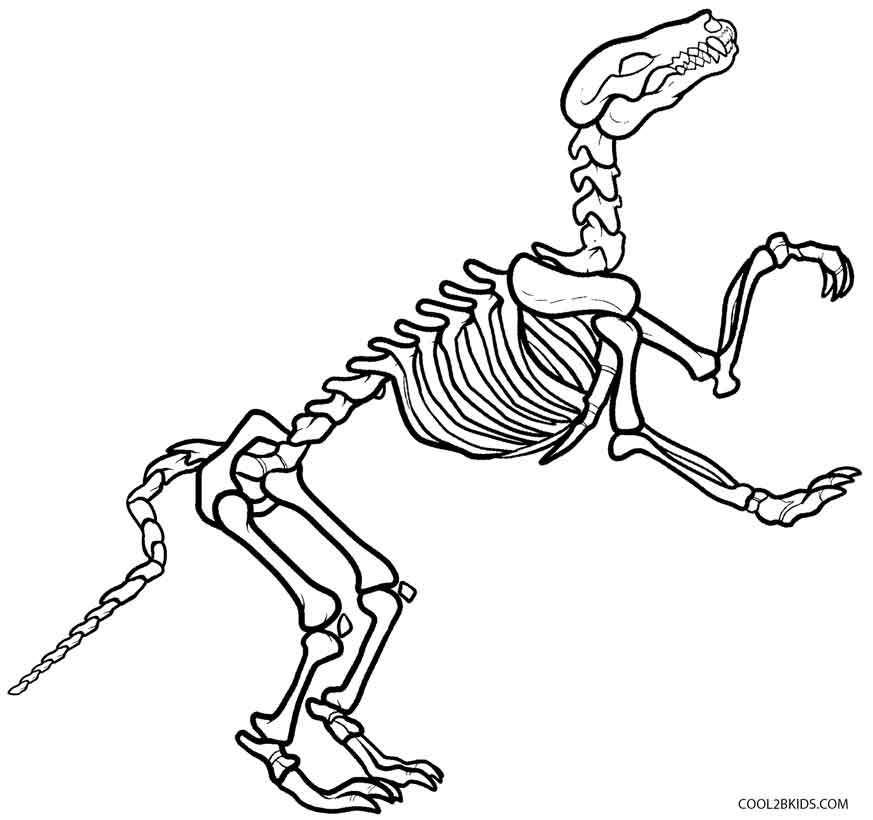 873x820 Dinosaur Bones Coloring Pages Free Coloring Page For Kids