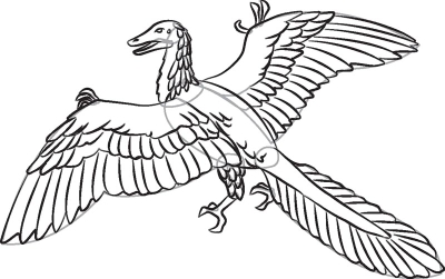 400x251 How To Draw Archaeopteryx In 7 Steps Howstuffworks