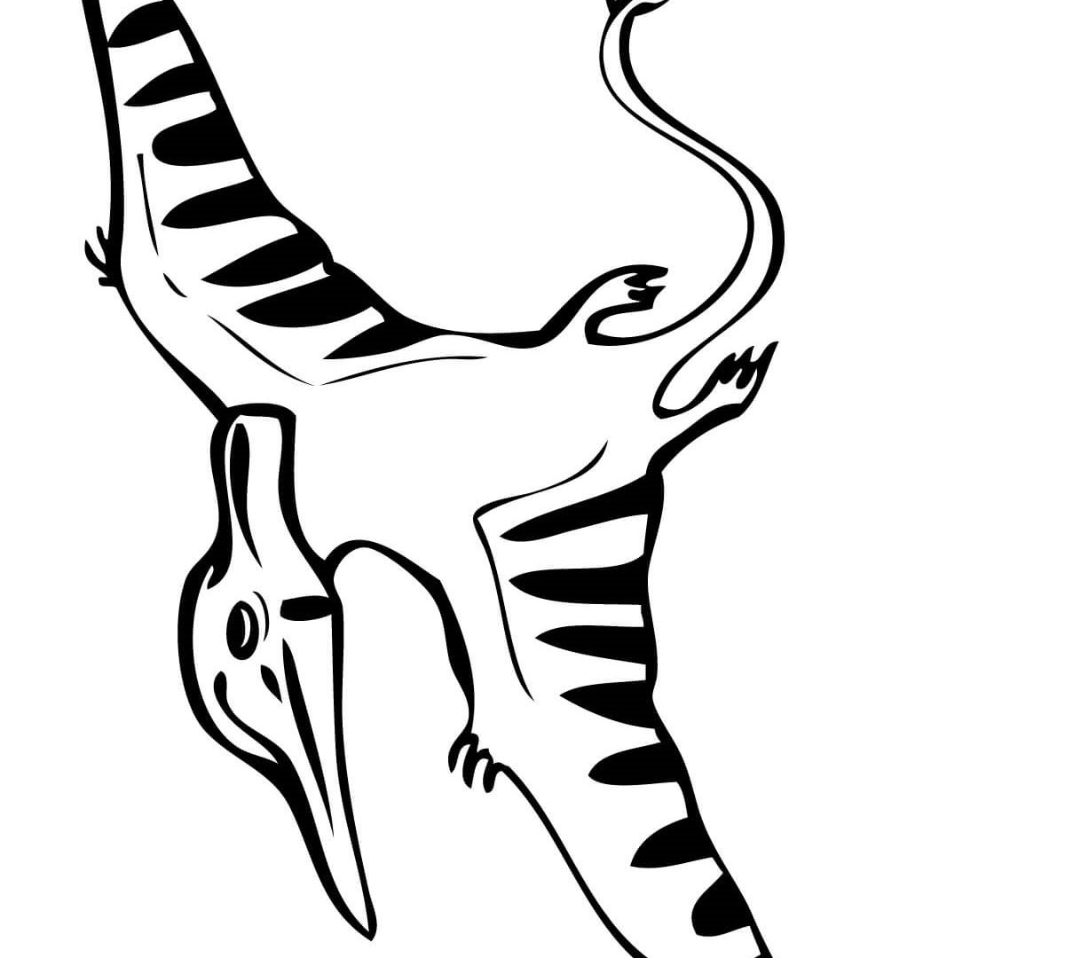 1200x1080 Pteranodon Coloring Page Dinosaurs Free Printable Pages