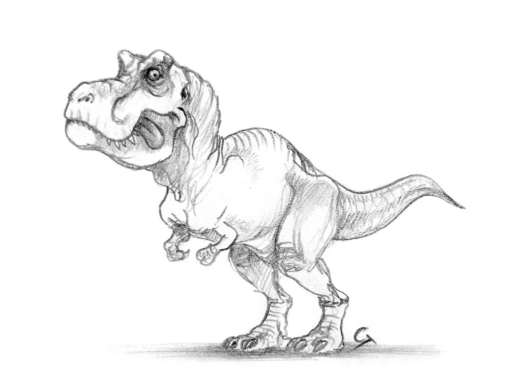 1021x783 Drawn Tyrannosaurus Rex Cartoon