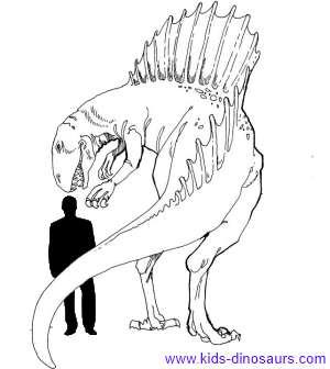 300x336 Spinosaurus Dinosaur Facts For Kids
