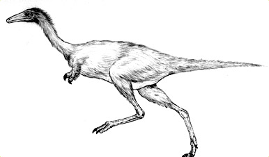 386x226 Drawing Dinos Ology, Science For Kids