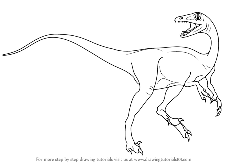 800x566 Learn How To Draw A Troodon (Dinosaurs) Step By Step Drawing
