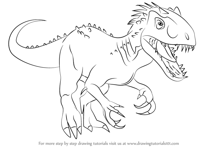 800x566 Learn How To Draw The Indomius Rex (Dinosaurs) Step By Step