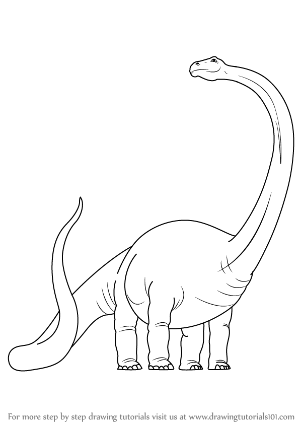 598x844 Learn How To Draw A Dinosaur (Dinosaurs) Step By Step Drawing