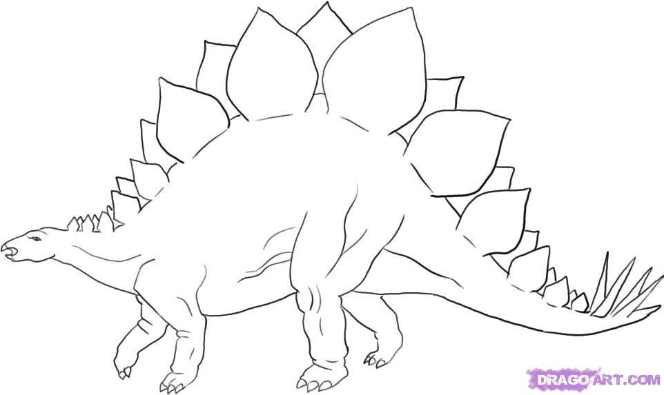 962x573 To Draw A Stegosaurus Dinosaur
