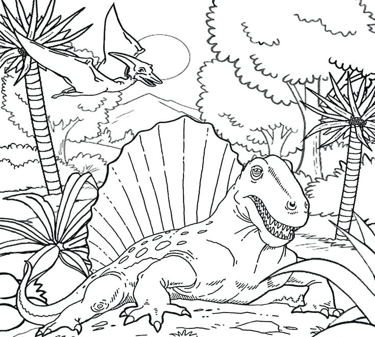 736x662 Fossil Coloring Pages Fossils Coloring Sheet Dinosaur Fossil