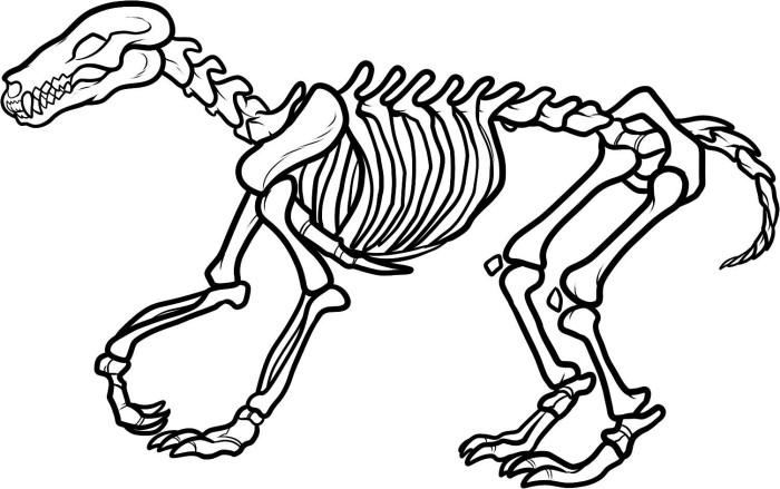 700x439 Free Dinosaur Skeleton Coloring Page Lines