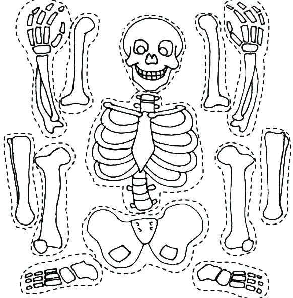 582x592 Bone Coloring Page Skeleton And His Bones Part Coloring Page