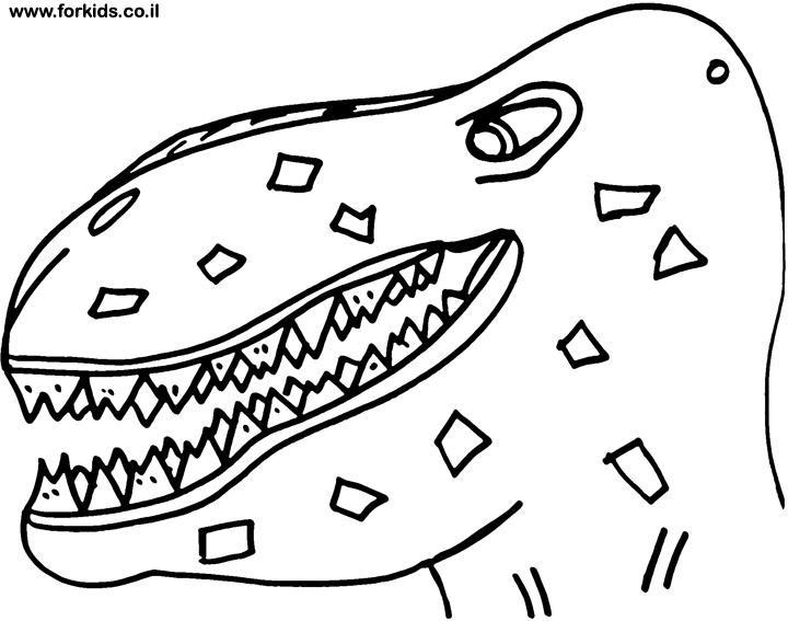 720x567 Dinosaurs Head Coloring Pages Colouring In Funny Draw Print