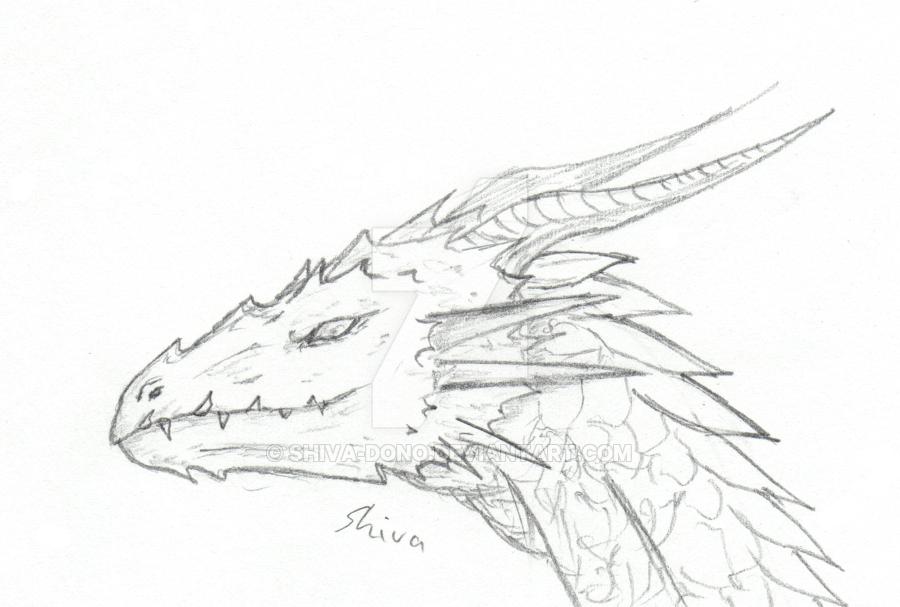 900x607 Dragon Head Sketch By Shiva Dono