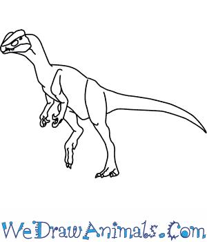 300x350 How To Draw A Dilophosaurus