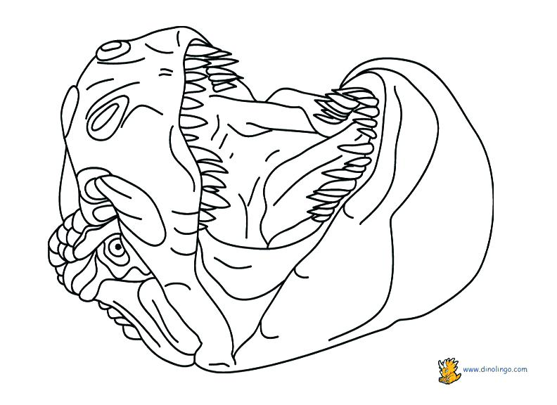 792x576 Ideal Dinosaur Color Pages Image Coloring Of Dinosaurs Drawing