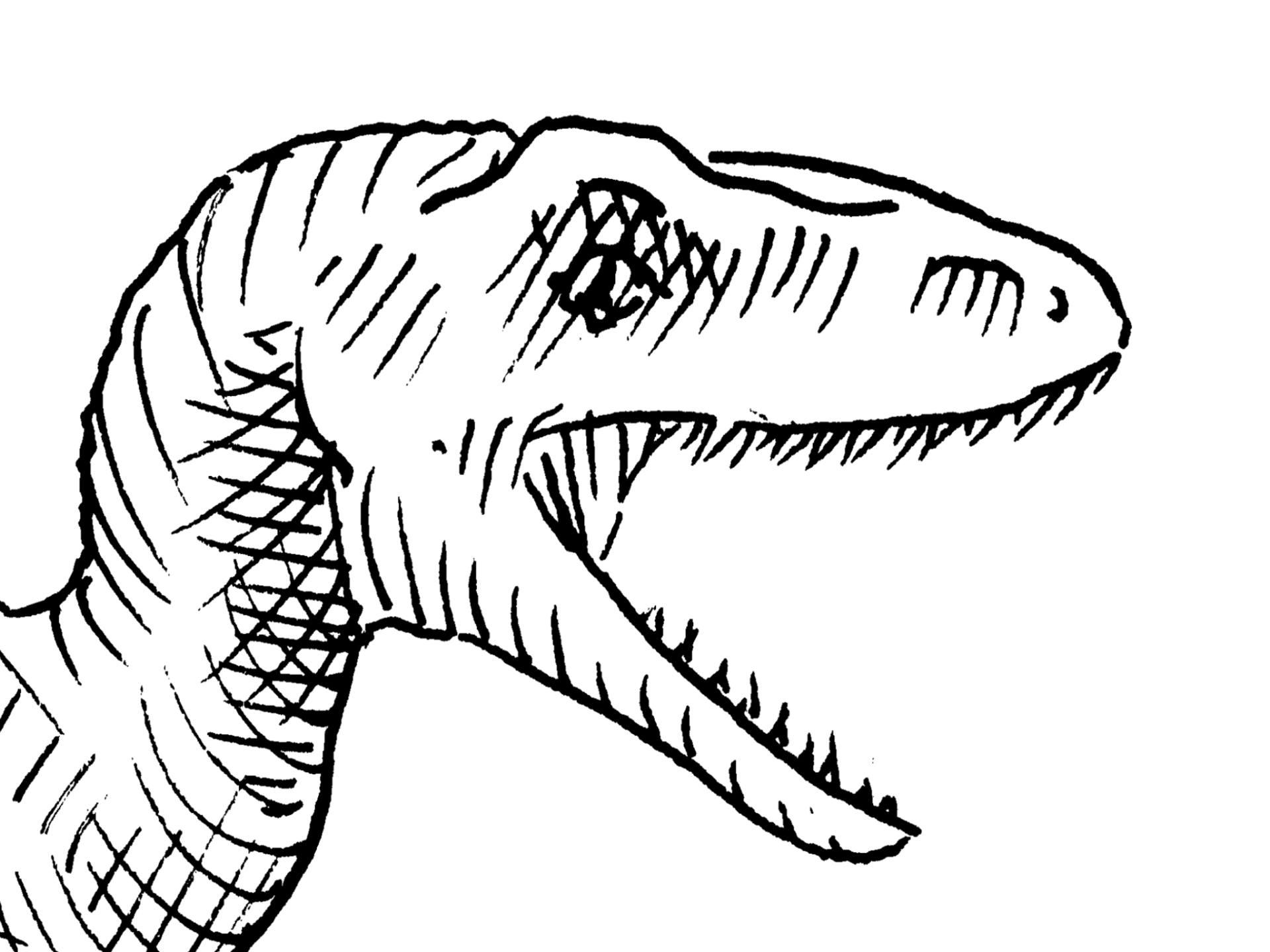 1920x1440 Saatchi Art Velociraptor