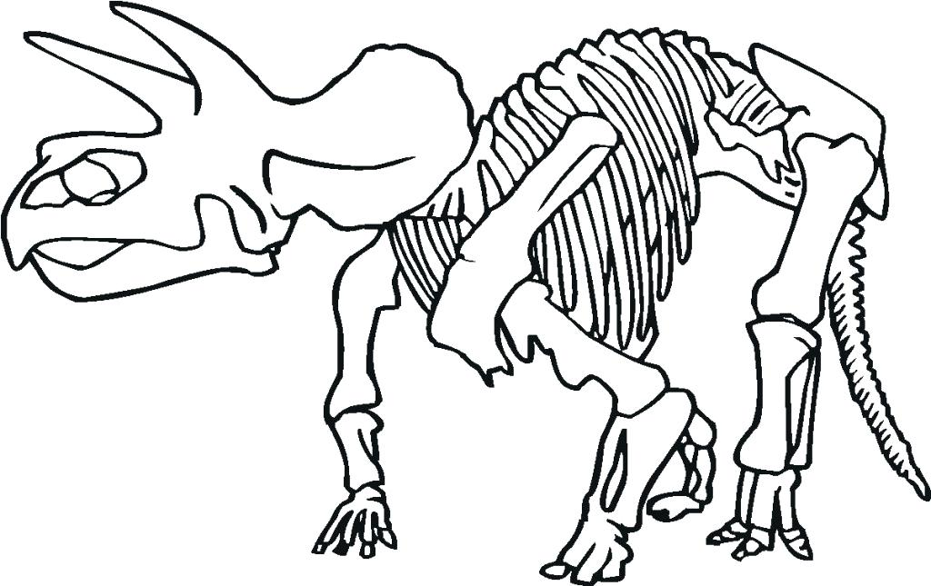 1024x645 Dinosaur Bones Coloring Pages Triceratops Skeleton Outline Drawing