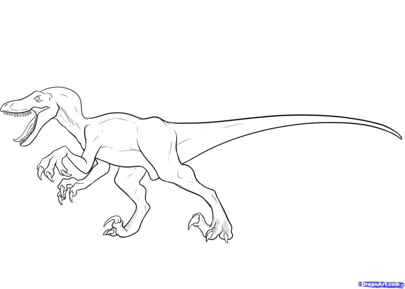 805x575 Drawing Easy Dinosaur Drawing Step By Step As Well As Dinosaur