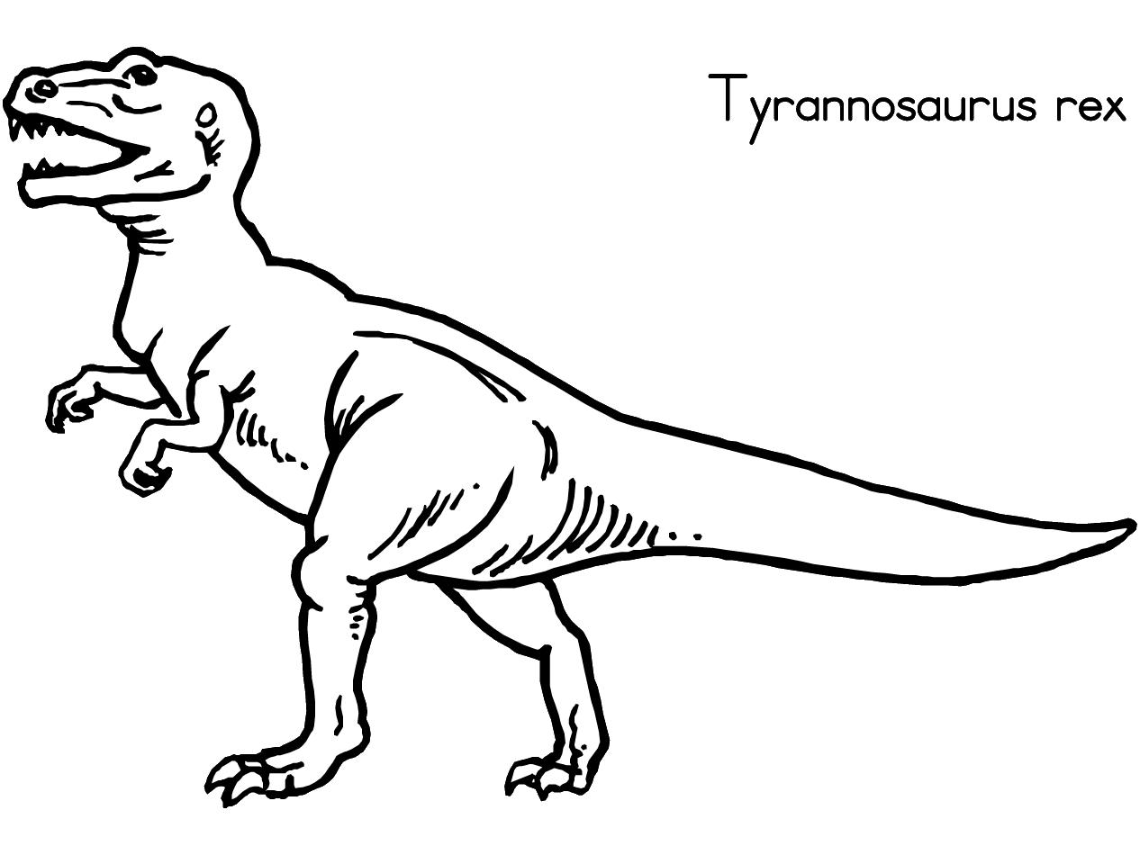 1266x950 Dinosaur