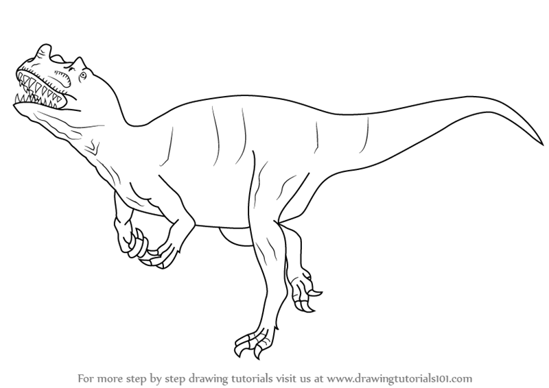 800x566 Learn How To Draw A Ceratosaurus (Dinosaurs) Step By Step