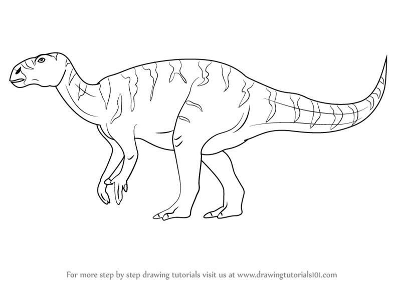 800x566 Learn How To Draw A Iguanodon (Dinosaurs) Step By Step Drawing