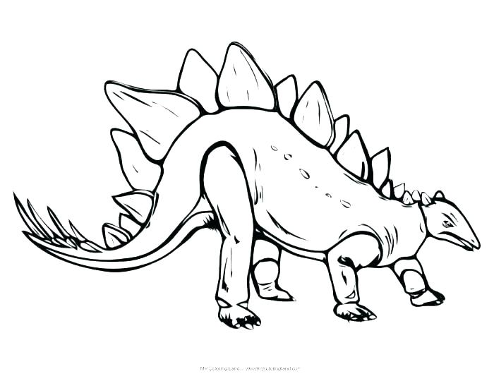 700x540 Drawn Dinosaur Stegosaurus 1 8 Pencil And In Color Coloring Page