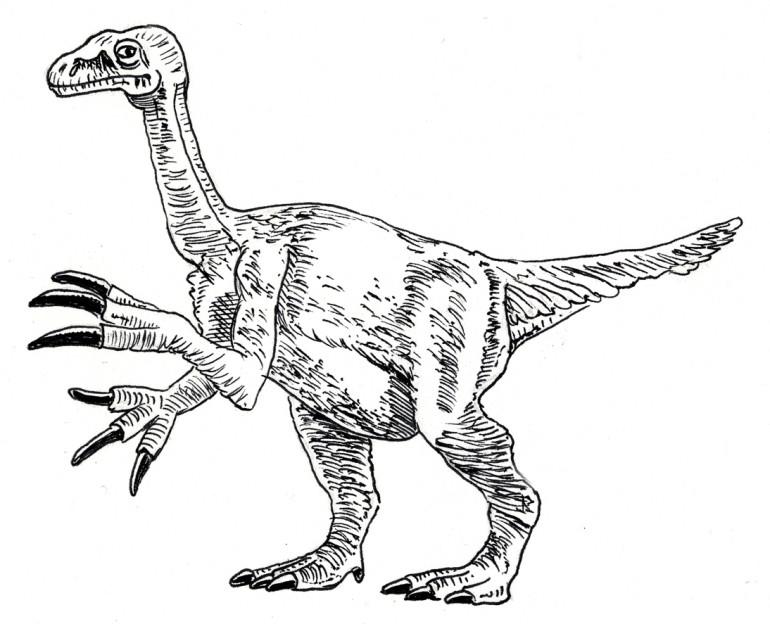 770x624 Dinosaur Skeleton Coloring Page Free Download