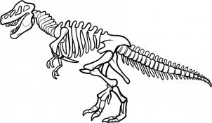 302x176 Dinosaur Skeleton Coloring Pages