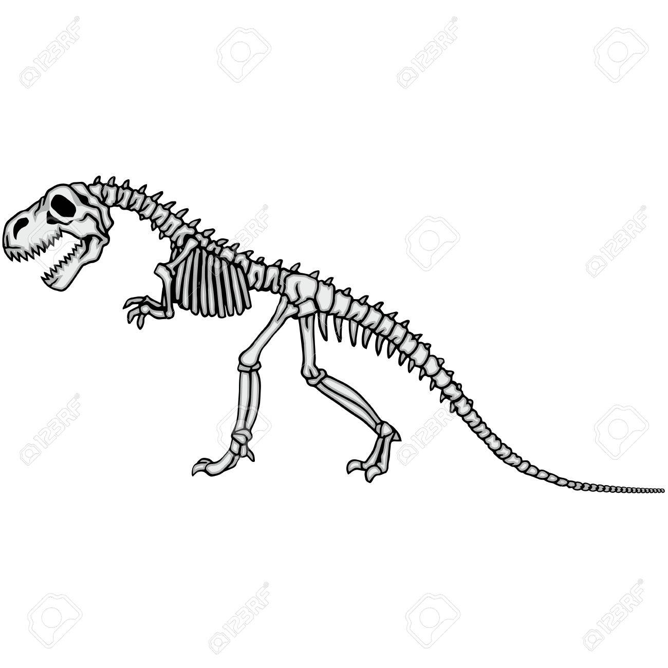 how to draw a dinosaur skeleton