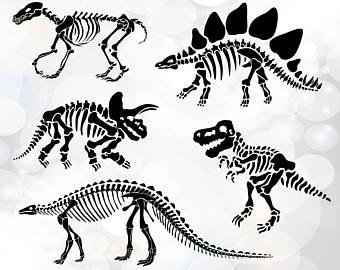 340x270 Dinosaur Skeleton Etsy