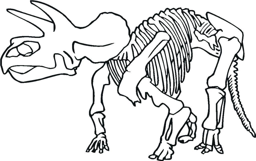 1024x645 Skeleton Coloring Sheet Dinosaur Skeleton Coloring Page Skeleton
