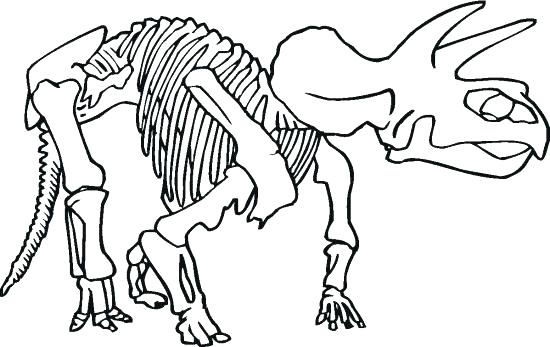 550x347 Dinosaur Fossils Coloring Pages