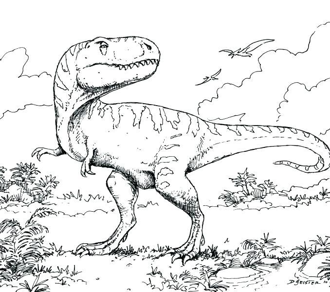 Dinosaur Skeleton Drawing At Getdrawings Free Download