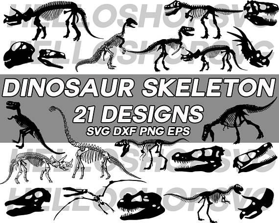 570x456 Dinosaur Skeleton Svg, Dinosaur Svg, Skull Svg, Dinosaur Skull
