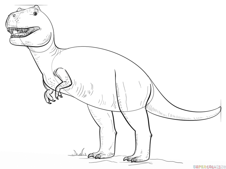 770x575 How To Draw Tyrannosaurus Rex Step By Step Drawing Tutorials