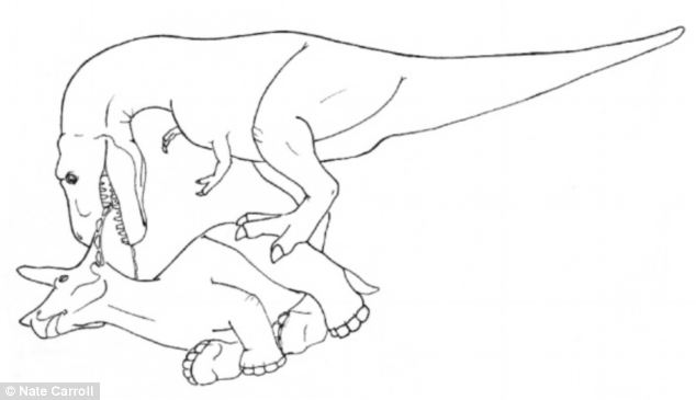 634x365 How To Eat A Triceratops Researchers Reveal How T Rex Ripped Its