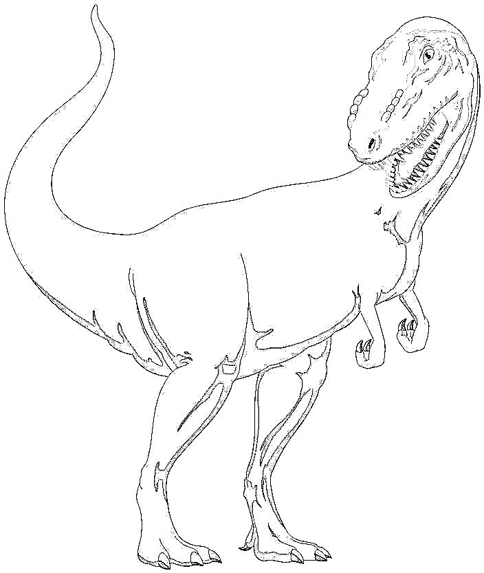 704x833 Tyrannosaurus Rex Coloring Page T Rex Coloring Pages Online
