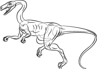 Dinosaurs Drawing Step Step