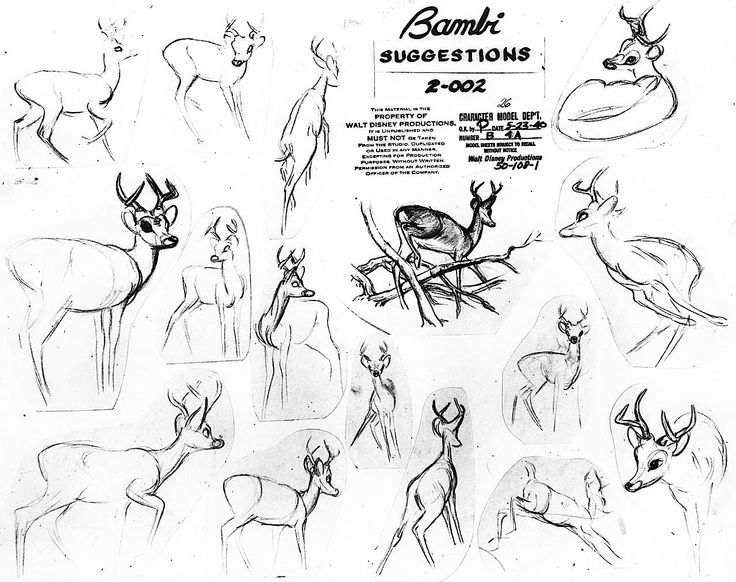 736x582 Drawn Bambi Concept Art