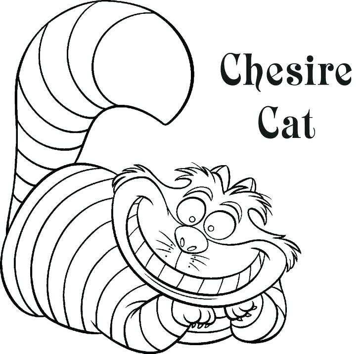 736x716 Elegant Disney Cruise Coloring Pages For Cruise Coloring Pages