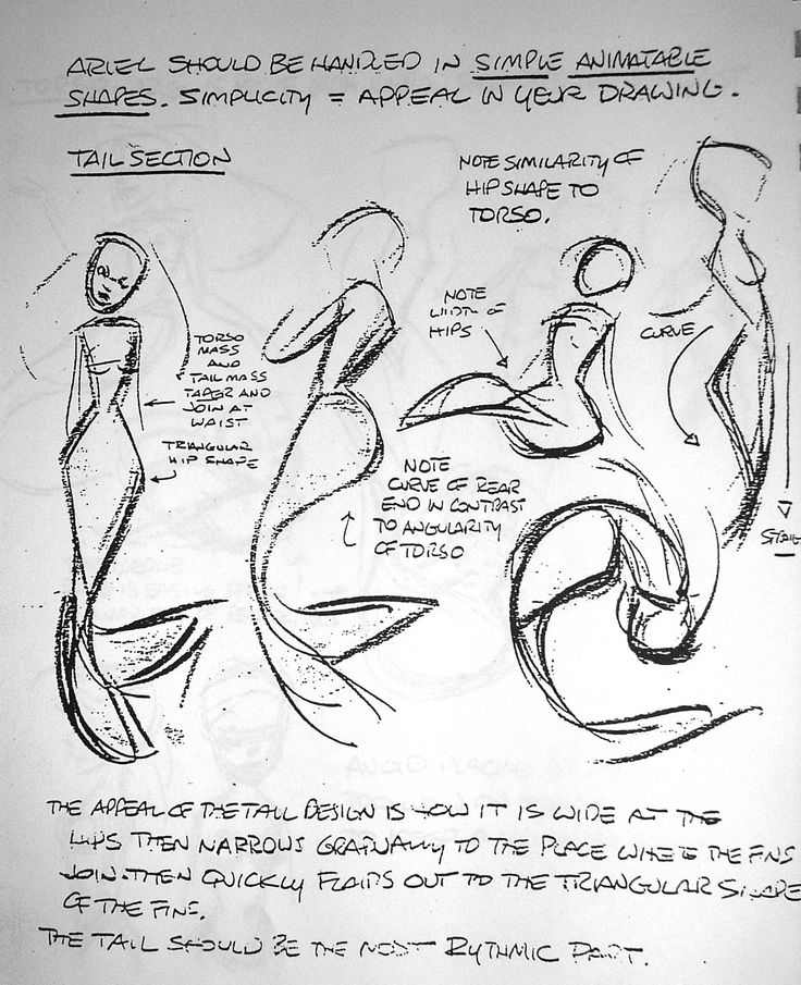 736x905 751 Best Disney Artists Amp Animation Sketches Images