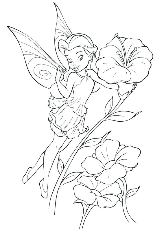 567x794 Disney Fairies Coloring Pages