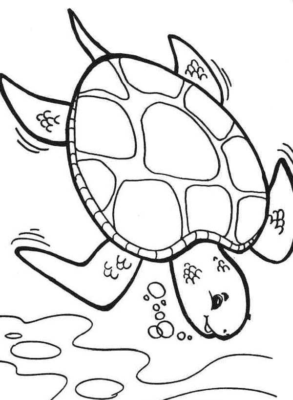 600x818 Diving Deeper Sea Turtle Coloring Page