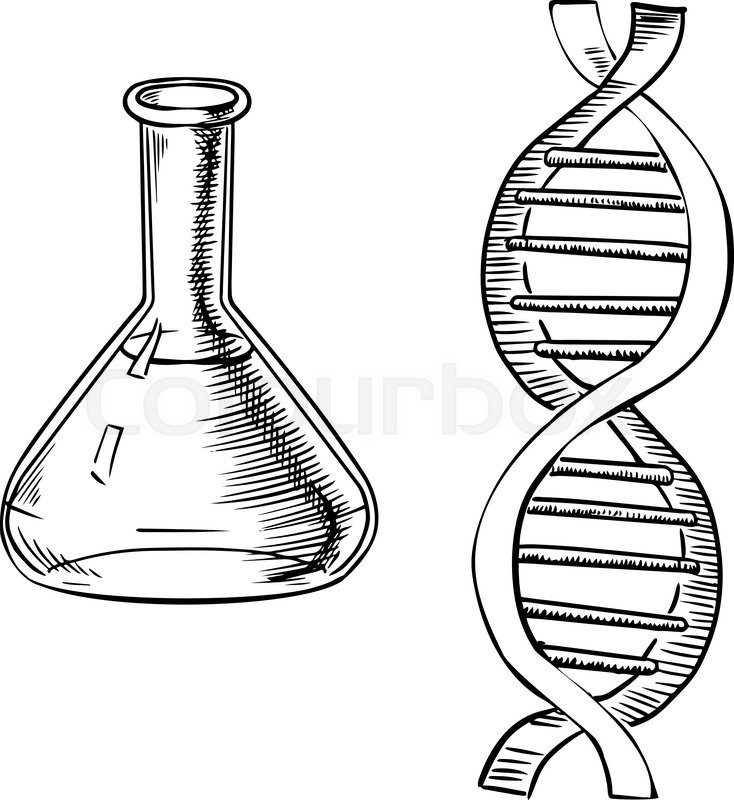 734x800 Laboratory Flask And Model Of Dna Helix Isolated On White