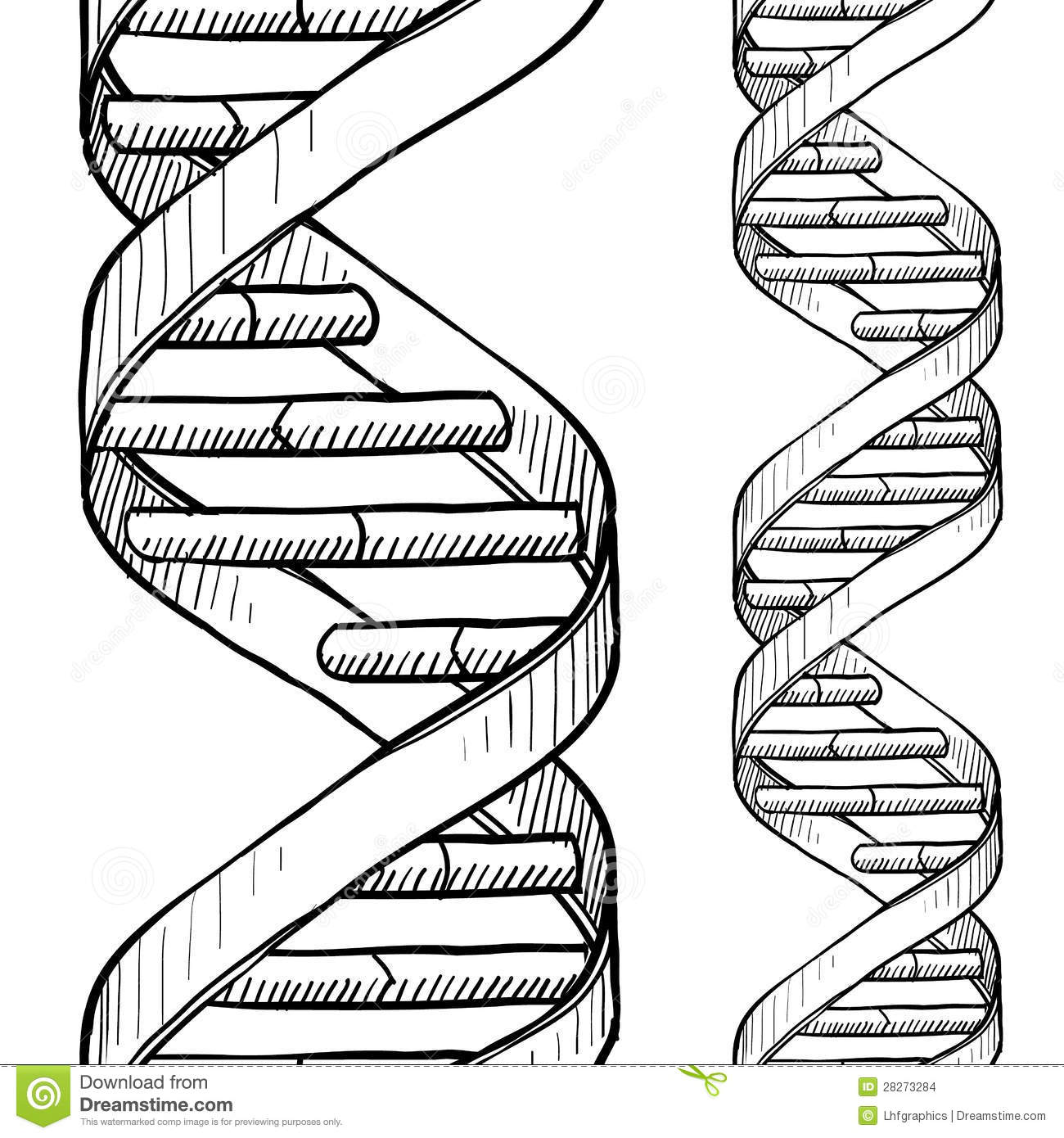 It is a photo of Crazy Drawing Of Dna