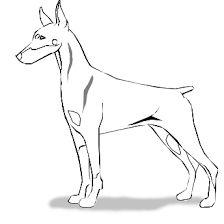 Doberman Drawing