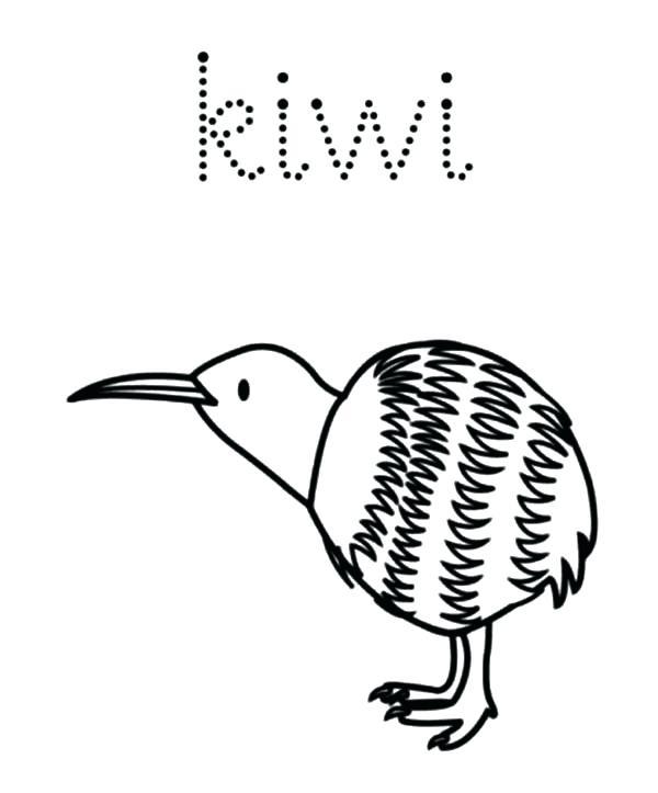 Dodo Bird Drawing At GetDrawings