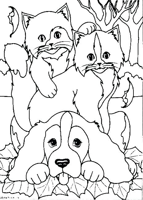464x648 Cat And Dog Coloring Pages Dogs Coloring Page Make A Photo Gallery