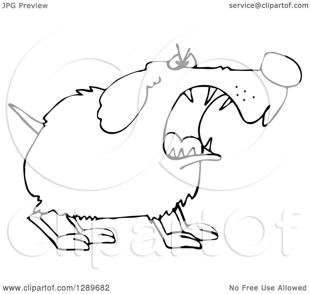 1080x1024 Clipart Of A Tough Black And White Dog Barking