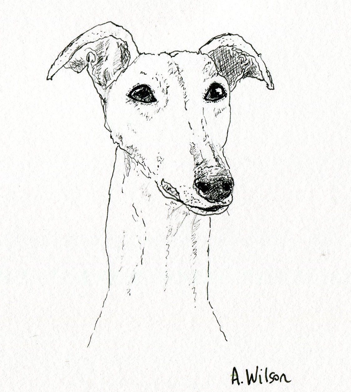 1121x1253 Introducing Annabel Wilson Art Dog Artist Amp Illustrator Twilight