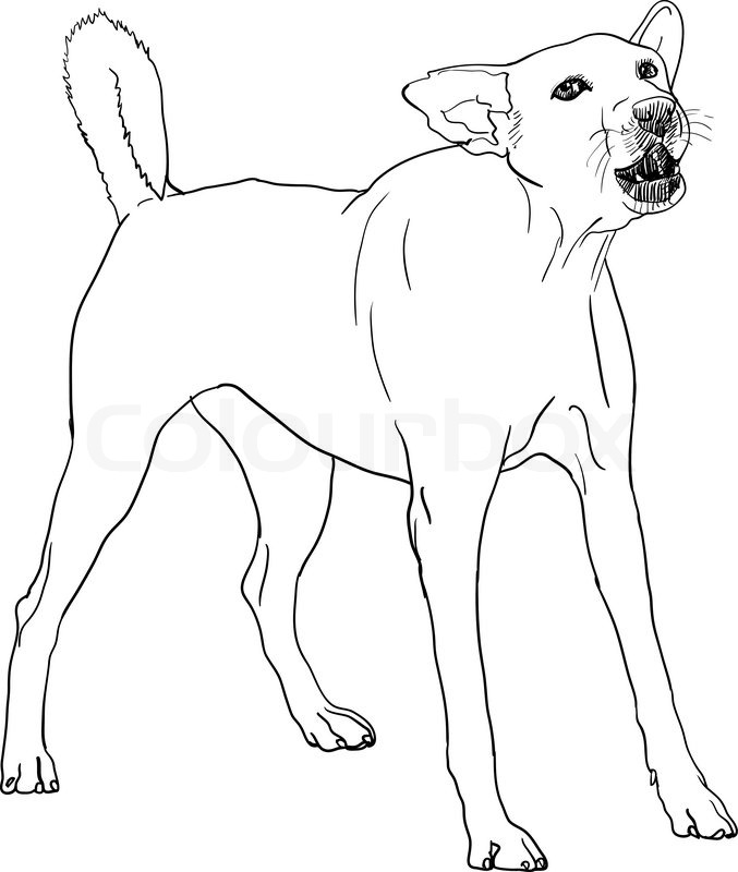 This is a photo of Smart Dog Barking Drawing