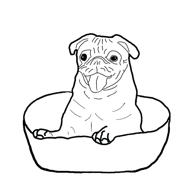 600x600 Boxer Coloring Pages